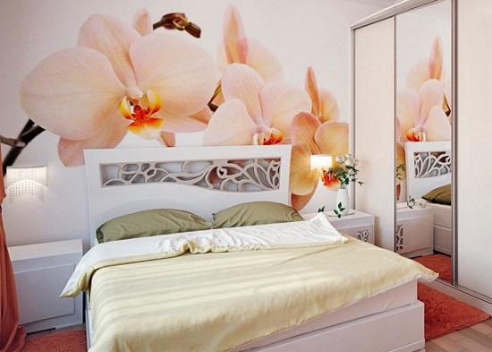 Обои с нежными орхидеями