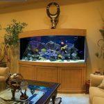 Большой аквариум для создания привлекательной спальни