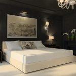 Дизайн интерьера спальни в темных черных цветах