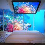 Дорогой аквариум для обустройства спальной комнаты