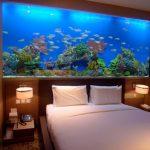 Стоит ли использовать аквариум в спальне