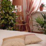 Оформление спального помещения комнатными цветами