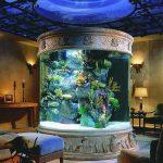 Устанавливаем аквариум в спальню