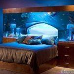 Выбираем аквариум в спальню