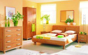 Как выбирать цветы для спальни