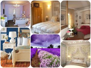 Примеры живых цветов для обустройства спальни