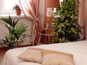Цветы в спальной комнате