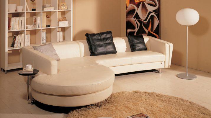 Мягкая мебель и домашние любимцы