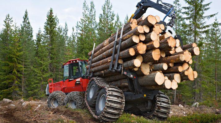 Выбор лесной техники для транспортировки древесины