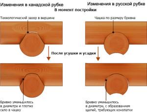 Преимущества рубки методом канадской чашки