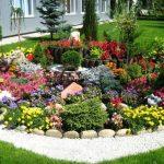 Альпийские горки в своем саду: элементы и уход